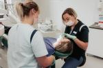 Hillside Dental Zahnklinik Sopron